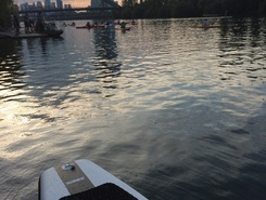 Deutschherrnufer, Frankfurt am Main sitio de stand up paddle / paddle surf en Alemania