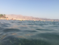Eilat spot de stand up paddle en Israël