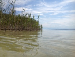 Herrsching - Ammersee paddle board spot in Germany