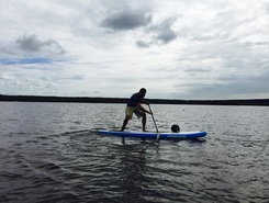 Tuckton  spot de stand up paddle en Royaume-Uni