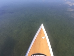 Port Hacking paddle board spot in Australia