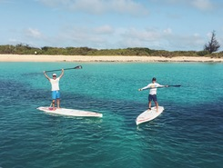 Tintamarre Island paddle board spot in St. Martin