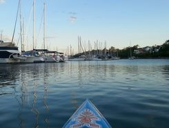 Manly Harbour paddle board spot in Australia