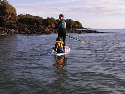 kerleven  sitio de stand up paddle / paddle surf en Francia