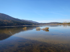 Lake Cerknica paddle board spot in Slovenia
