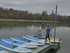 Waconda Bay, TN paddle board spot in United States