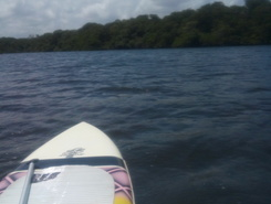Rio Pirapama paddle board spot in Brazil