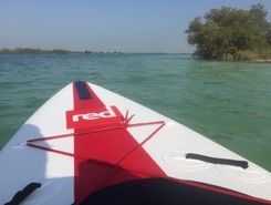Yass Island paddle board spot in United Arab Emirates