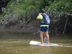 Apa do Curiau - Mocambo paddle board spot in Brazil