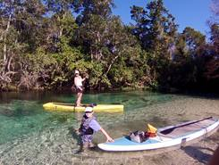 Homosassa paddle board spot in United States