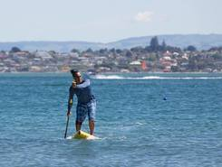 Pilot bay sitio de stand up paddle / paddle surf en Nueva Zelanda