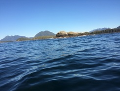 Tofino spot de stand up paddle en Canada