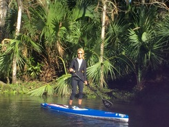 Weeki Wachee River, FL sitio de stand up paddle / paddle surf en Estados Unidos