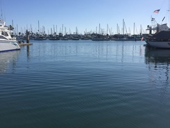 Point Loma Marina paddle board spot in United States