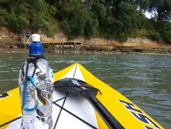 narrow neck paddle board spot in New Zealand