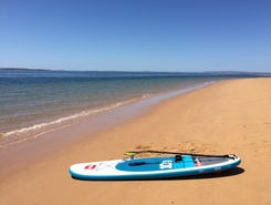 Ryhl Phillip Island paddle board spot in Australia