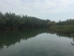 Hoi ann paddle board spot in Vietnam