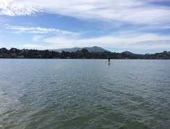 Richardson Bay paddle board spot in United States