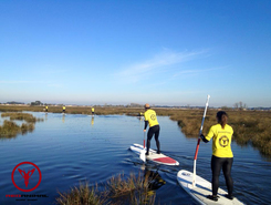Ria de Aveiro paddle board spot in Portugal