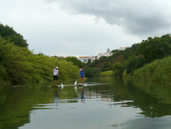 Rio Mira sitio de stand up paddle / paddle surf en Portugal