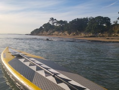 narrow neck sitio de stand up paddle / paddle surf en Nueva Zelanda