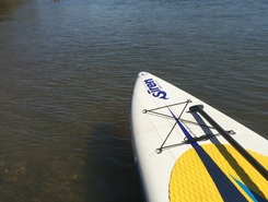 Chattahoochee at Azalea Park sitio de stand up paddle / paddle surf en Estados Unidos