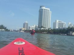 South Beach Kayak sitio de stand up paddle / paddle surf en Estados Unidos