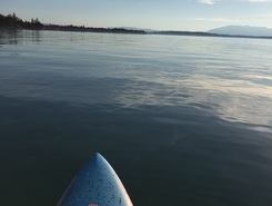 Corsier Port sitio de stand up paddle / paddle surf en Suiza