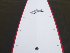 Huguenot Flatwater paddle board spot in United States