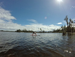 Iveagh Bay - Lake Brunner spot de stand up paddle en Nouvelle-Zélande