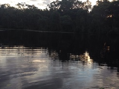 Pelican waters sitio de stand up paddle / paddle surf en Australia