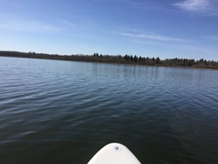 Astotin Lake - Elk Island National Park spot de stand up paddle en Canada