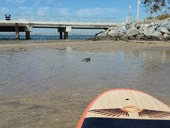 Chula Vista Marina paddle board spot in United States