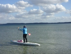 Holnis sitio de stand up paddle / paddle surf en Alemania
