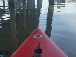 Courtney Cambell Causeway  paddle board spot in United States