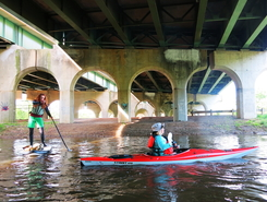 James River paddle board spot in United States