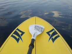 Baltezers sitio de stand up paddle / paddle surf en Letonia