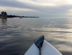 Park Umag sitio de stand up paddle / paddle surf en Croacia