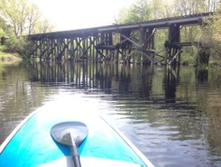 Charles River, Millis paddle board spot in United States
