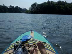 Lake Hartwell paddle board spot in United States