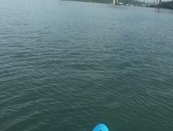 Muelle de la Boca. Panama , Rep. of Panama paddle board spot in Panama