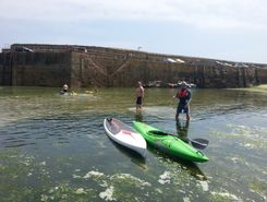 mousehole to newlyn spot de stand up paddle en Royaume-Uni