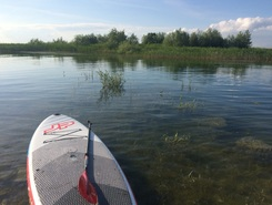 Lac du DER  sitio de stand up paddle / paddle surf en Francia