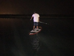 Mangroves 1  paddle board spot in United Arab Emirates