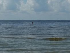 Fort Myers Beach spot de stand up paddle en États-Unis