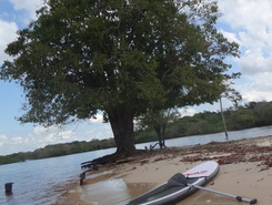 Praia da lua #manaus #sup #Амазония #amazonia sitio de stand up paddle / paddle surf en Brasil