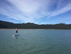 Te Matuku Bay paddle board spot in New Zealand