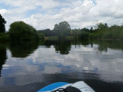 Aller (Hafen) paddle board spot in Germany