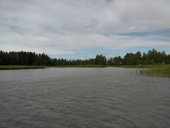 suvisaaristo paddle board spot in Finland