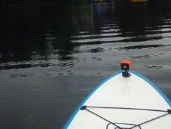 Cabin to landing and back paddle board spot in United States